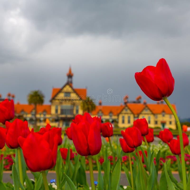 Jardines del gobierno - Rotorua imagen de archivo libre de regalías