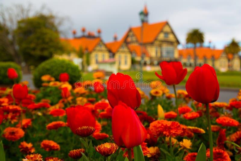 Jardines del gobierno - Rotorua imágenes de archivo libres de regalías