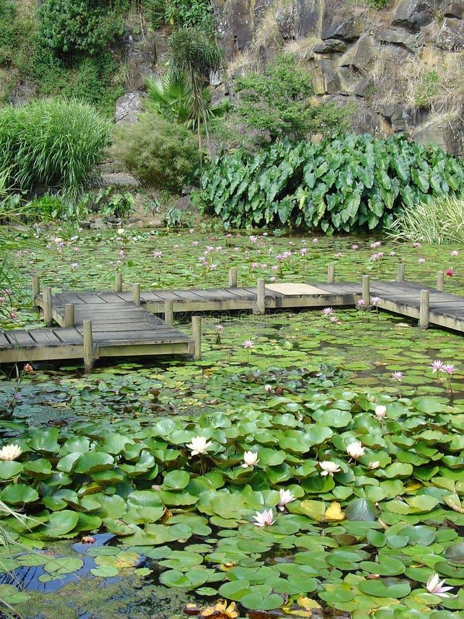 Jardines del lirio de agua de Monet fotografía de archivo