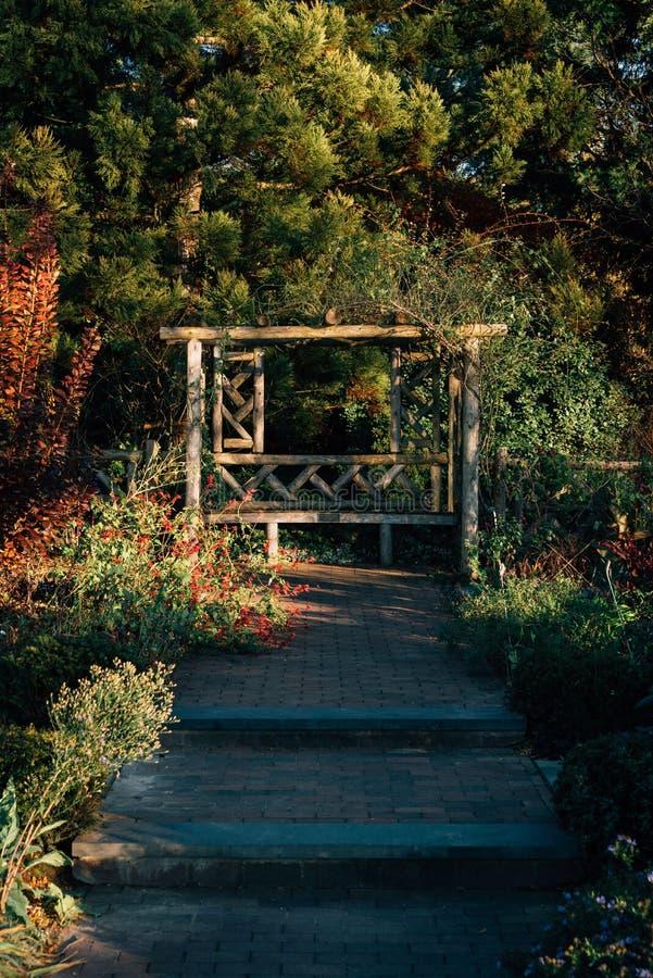 Jardines en los jardines p?blicos en el Bronx, New York City de la colina de la onda imagen de archivo
