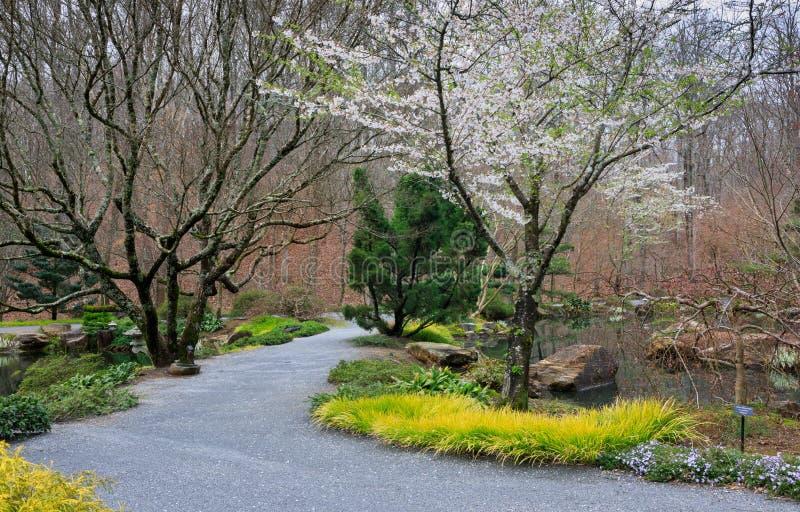 Jardines Georgia de Gibbs del japonés fotos de archivo