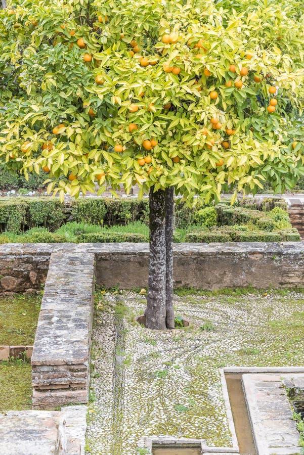 Jardines históricos de Alhambra fotos de archivo