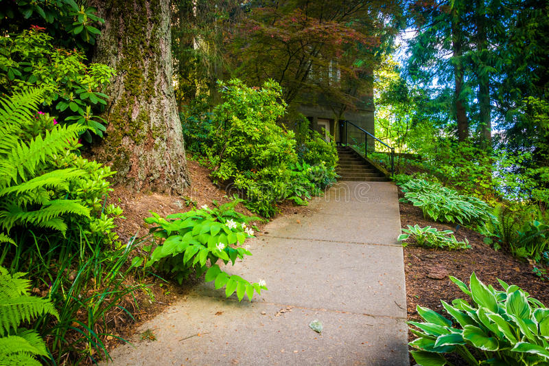 Jardines a lo largo de una calzada fuera de la mansión de Pittock, en Portland fotos de archivo