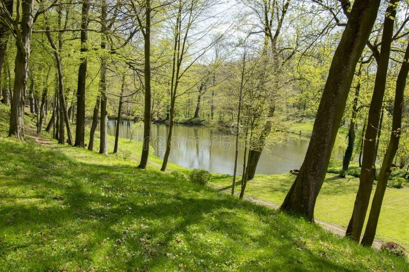 Jardines públicos en Chotebor con la charca durante la estación de primavera, escena romántica, reflexiones del agua fotografía de archivo