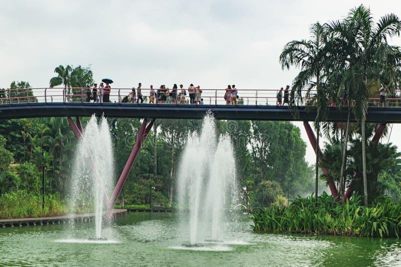 Jardines por la bahía después de la lluvia en Singapur imágenes de archivo libres de regalías
