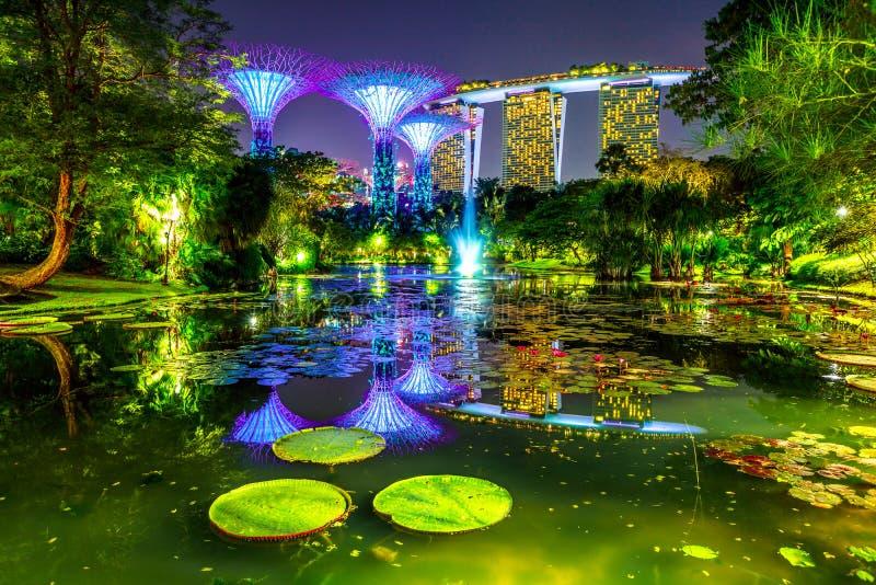 Jardines por la noche de la bahía foto de archivo