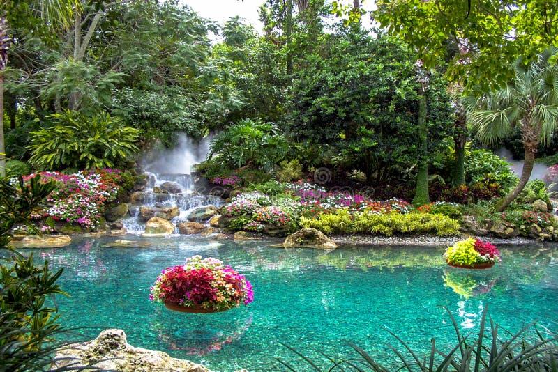 Jardines tropicales del agua imágenes de archivo libres de regalías