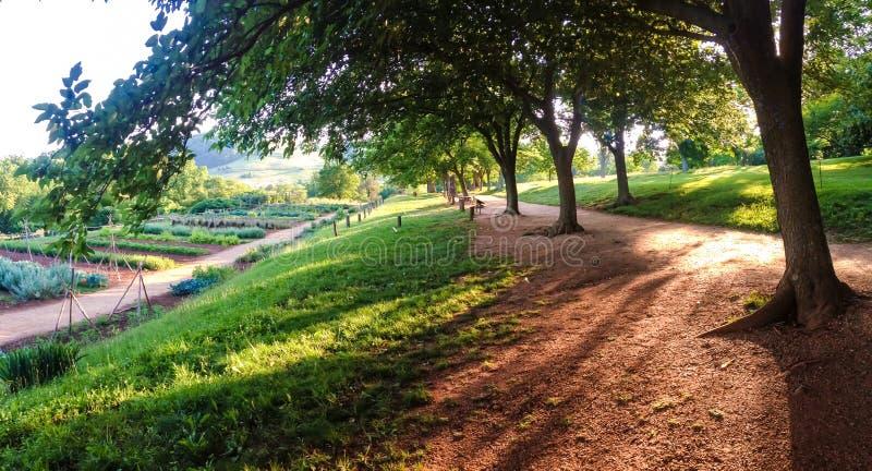 Jardines y camino foto de archivo