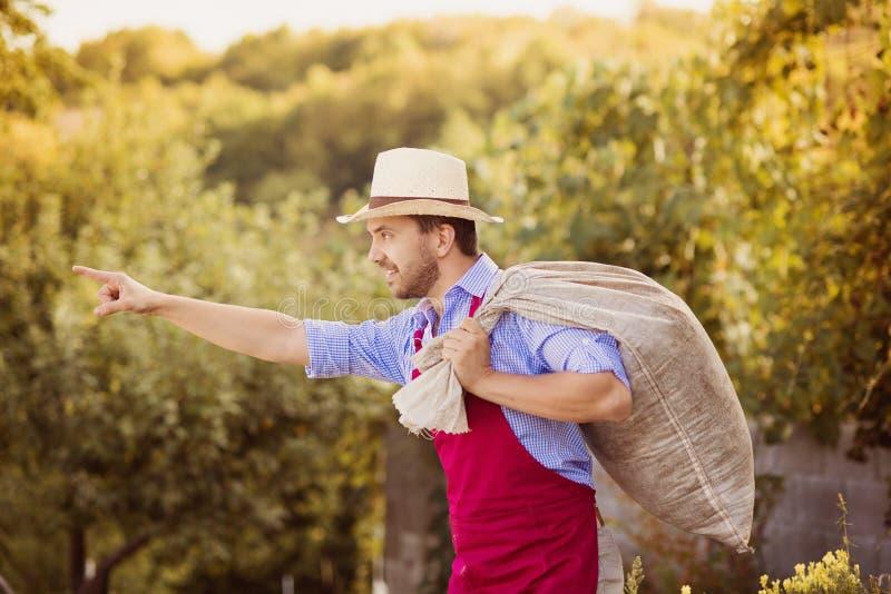 Jardinier photographie stock libre de droits