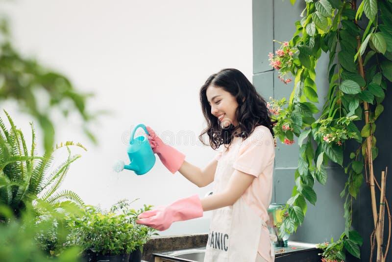 Jardinier asiatique de femme arrosant les fleurs dans son jardin dans le summe photographie stock