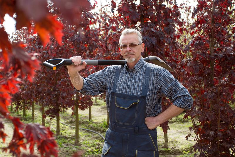 Jardinier avec une pelle dans le jardin sur un fond des arbres image stock