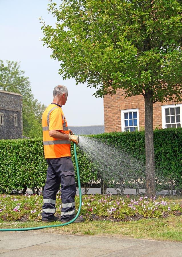 Jardinier d'ouvrier du Conseil photos stock