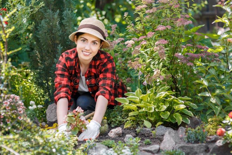 Jardinier de femme plantant des fleurs image stock