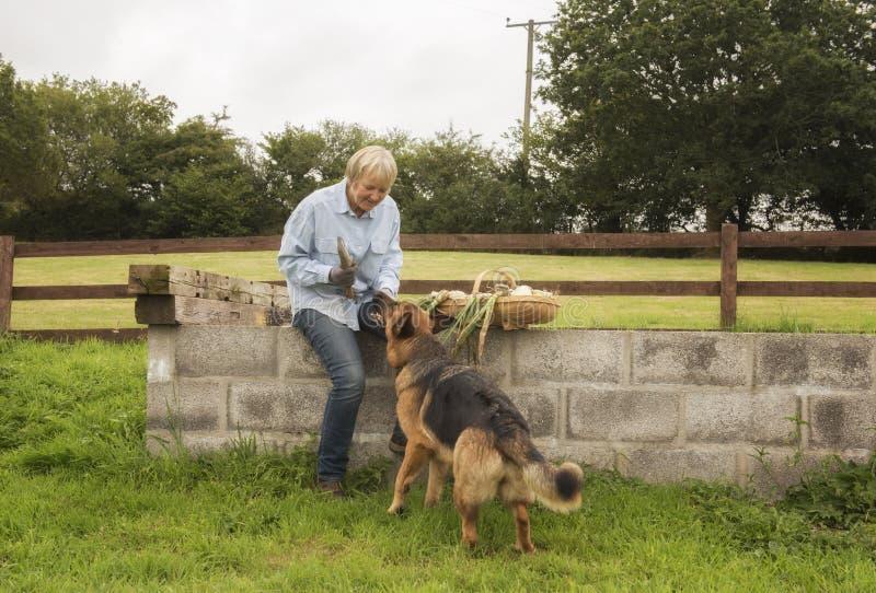 Jardinier féminin dehors avec son Alsacien d'animal familier photos libres de droits