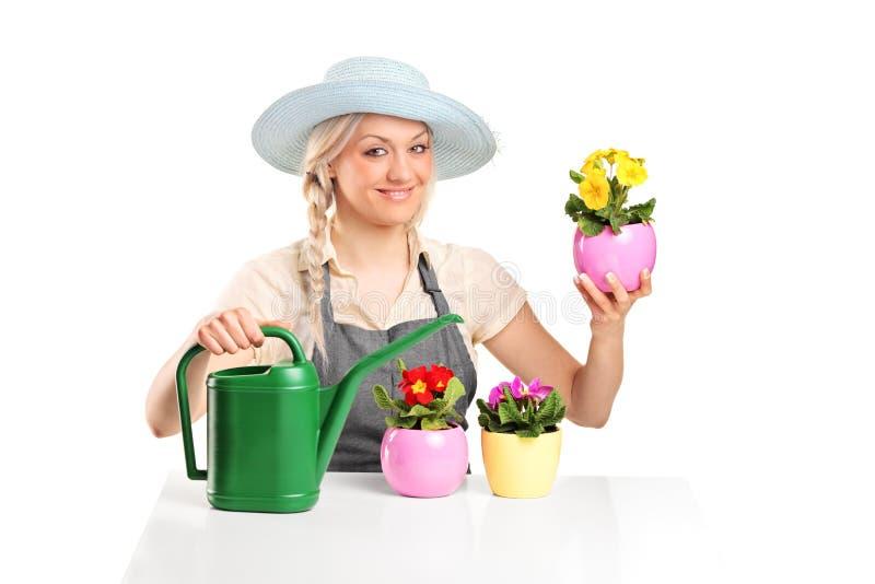 Jardinier féminin posant avec des bacs de fleur image libre de droits
