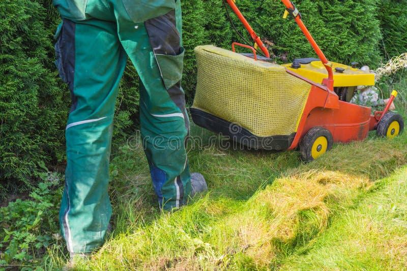 Jardinier fauchant la pelouse images libres de droits