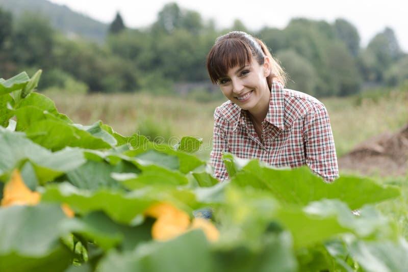 Jardinier heureux posant avec des usines image stock