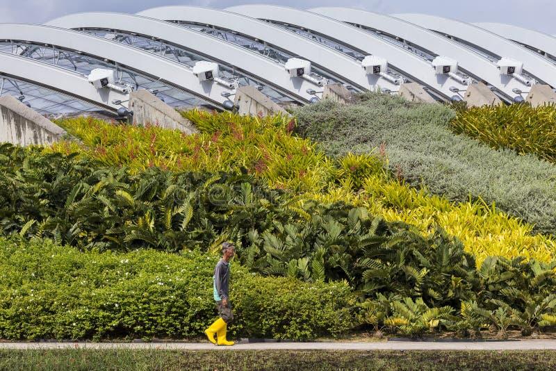 Jardinier marchant le long des parterres avec le dôme de fleur à l'arrière-plan photos stock