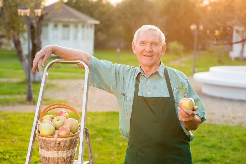 Jardinier souriant et tenant la pomme image libre de droits