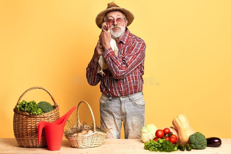 Jardinier supérieur, posant avec la poule dans des mains, se tenant derrière le compteur avec des légumes photos libres de droits