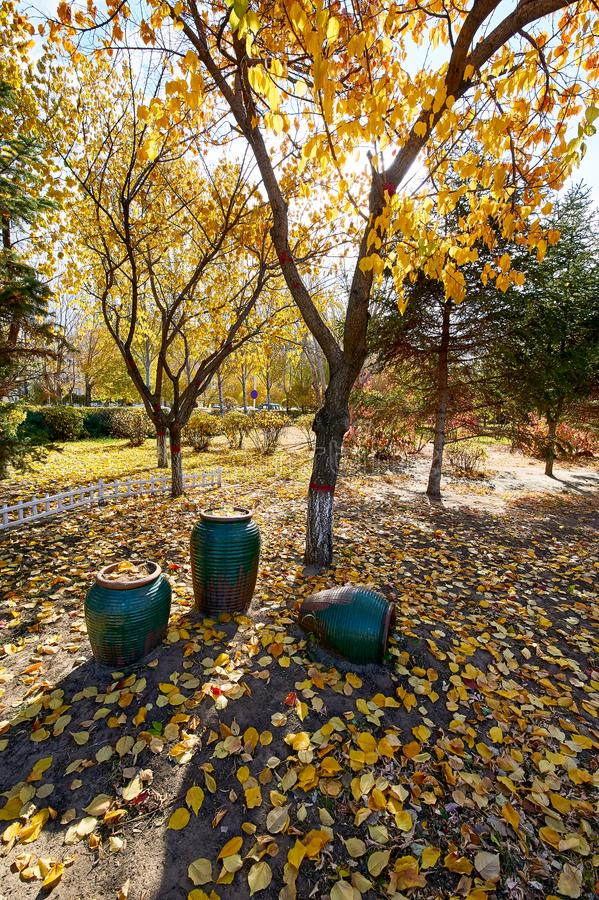The jardiniere and fallen leaves in the park royalty free stock photography