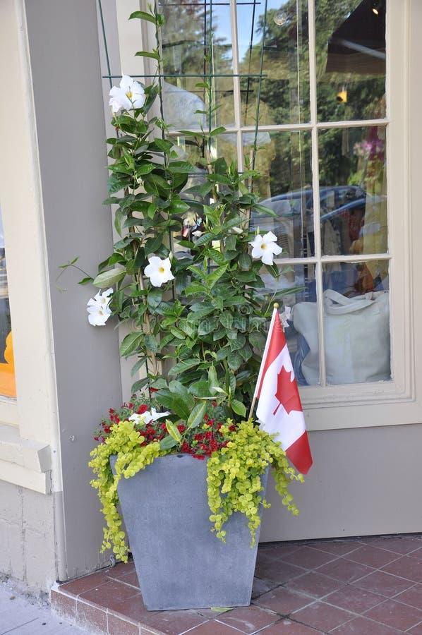 Jardiniere z różnymi kwiatami i kanadyjczyk zaznaczamy w widzieć śródmieściu jezioro od Ontario prowinci zdjęcia stock