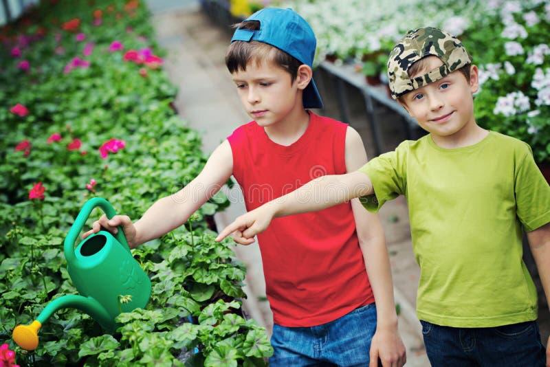 Jardiniers photographie stock