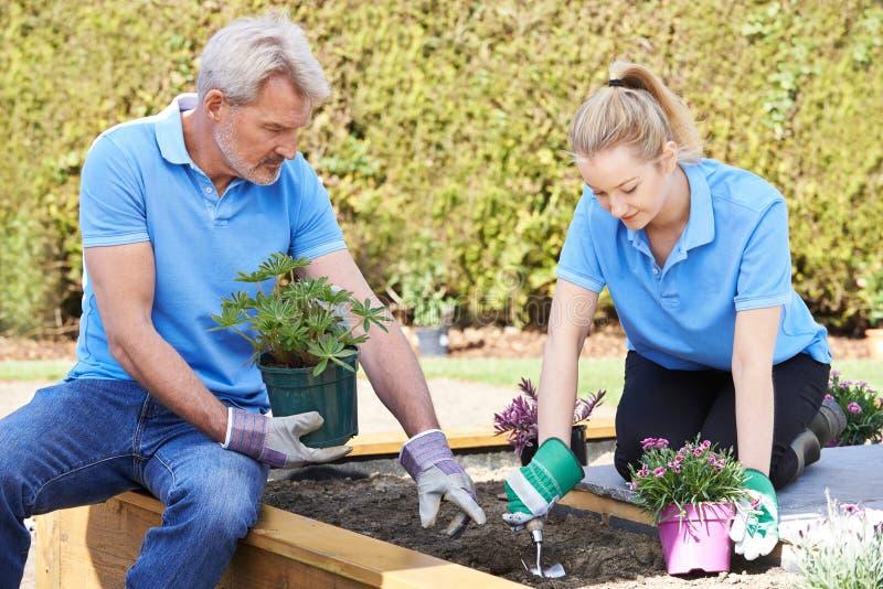 Jardiniers de paysage plantant dans le lit de fleur image stock