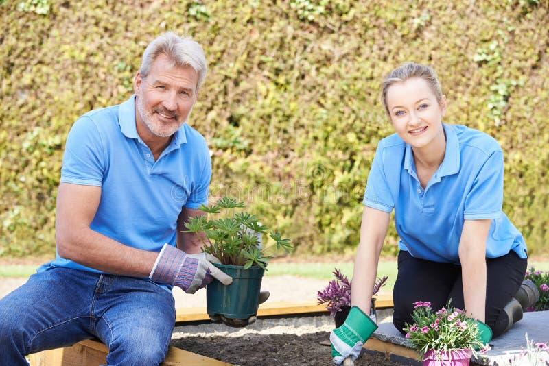 Jardiniers de paysage plantant dans le lit de fleur photographie stock