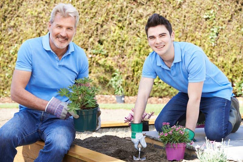 Jardiniers de paysage plantant dans le lit de fleur photo libre de droits