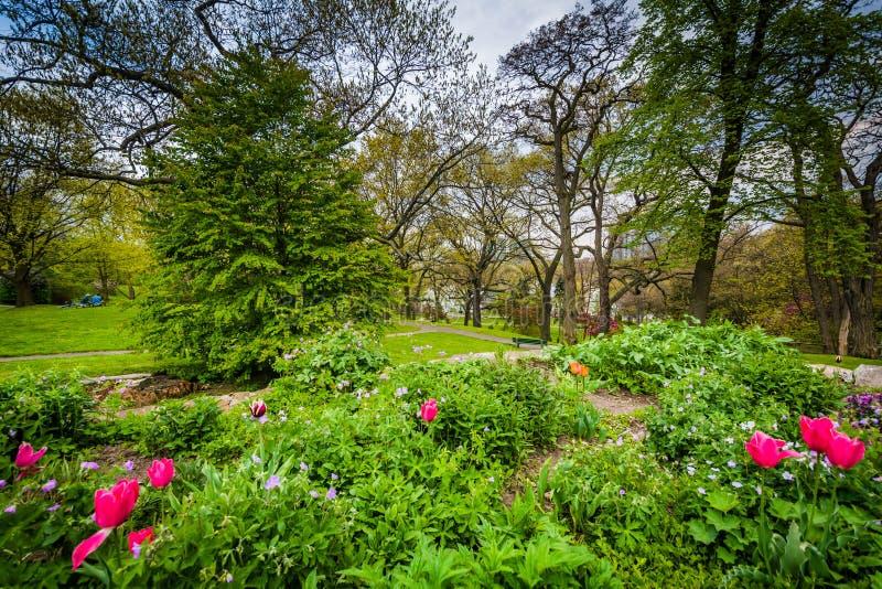 Jardins au haut parc, à Toronto, Ontario images libres de droits