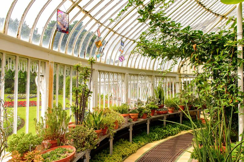 Jardins botânicos belfast foto de stock royalty free