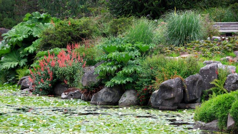 Jardins botânicos de Vancouver imagens de stock