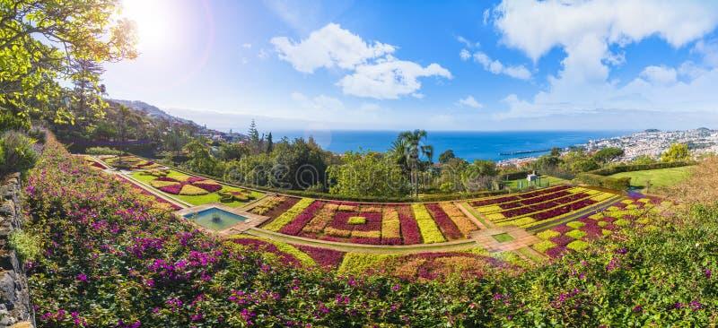 Jardins botânicos tropicais em Funchal, ilha de Madeira, Portugal foto de stock