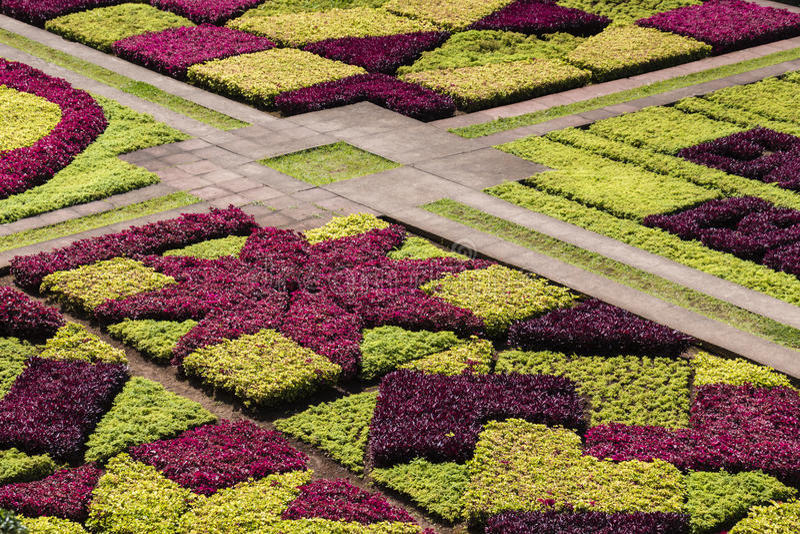 Jardins botânicos tropicais famosos na cidade de Funchal, Madeira islan imagens de stock