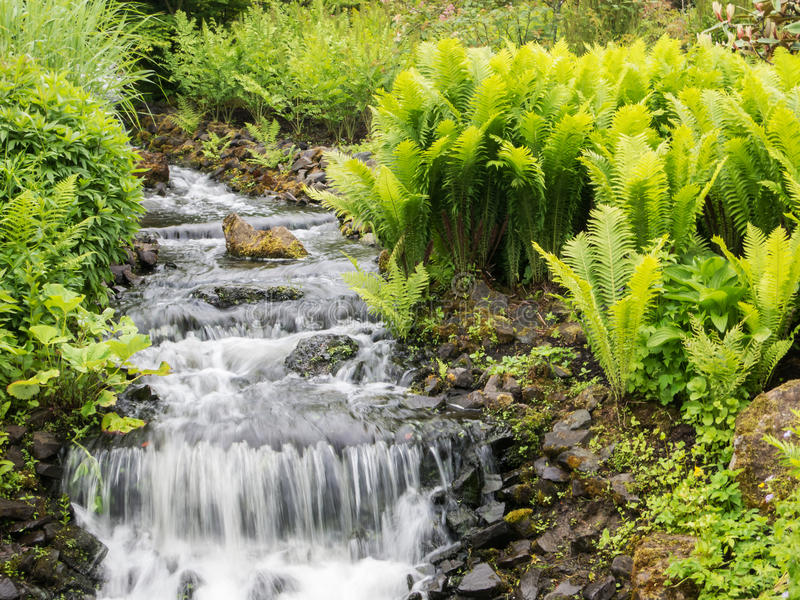 Jardins botaniques image stock