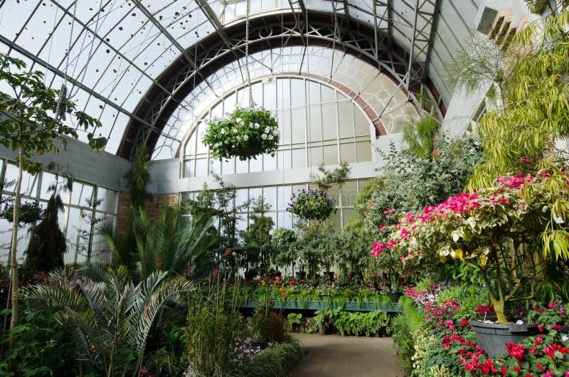 Jardins botaniques d'Auckland photographie stock libre de droits