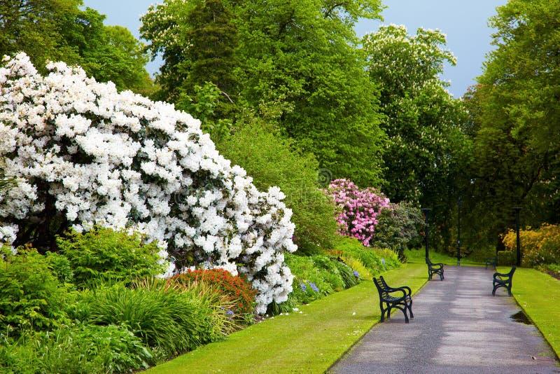 Jardins botaniques de belfast image stock image du for Culture des jardins