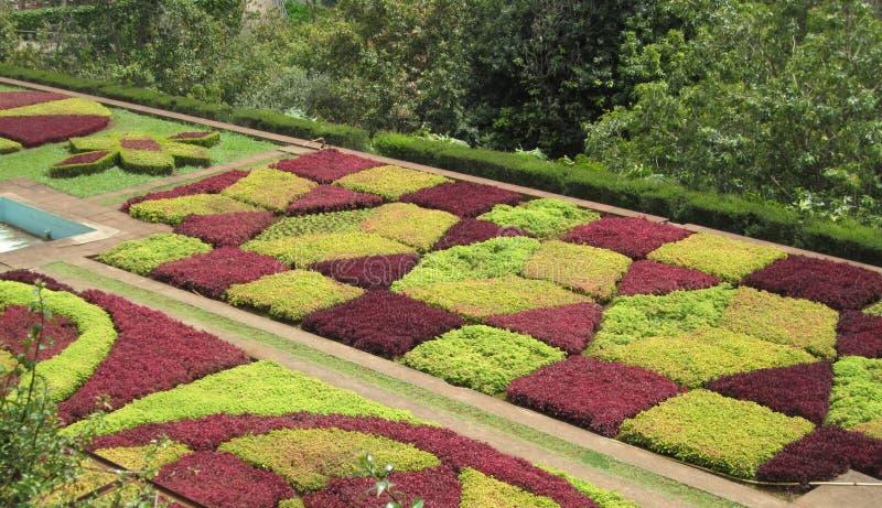 Jardins botaniques de la Madère photographie stock libre de droits