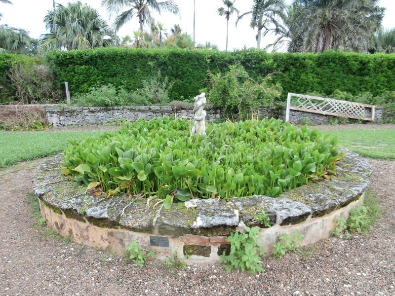 Jardins botaniques des Bermudes photos stock