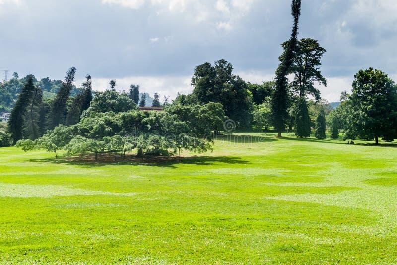 Jardins botaniques royaux de Peradeniya près de Kandy, LAN de Sri photographie stock libre de droits
