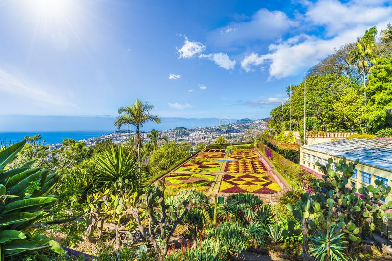 Jardins botaniques tropicaux à Funchal, capitale de la Madère, Portugal images stock
