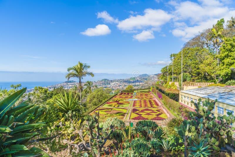 Jardins botaniques tropicaux à Funchal, Madère photo libre de droits