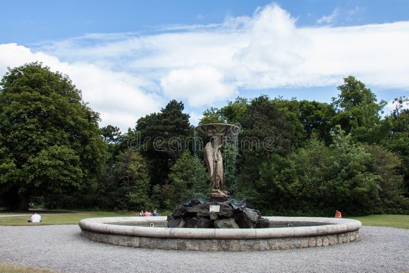 Jardins d'Iveagh, Dublin photographie stock libre de droits