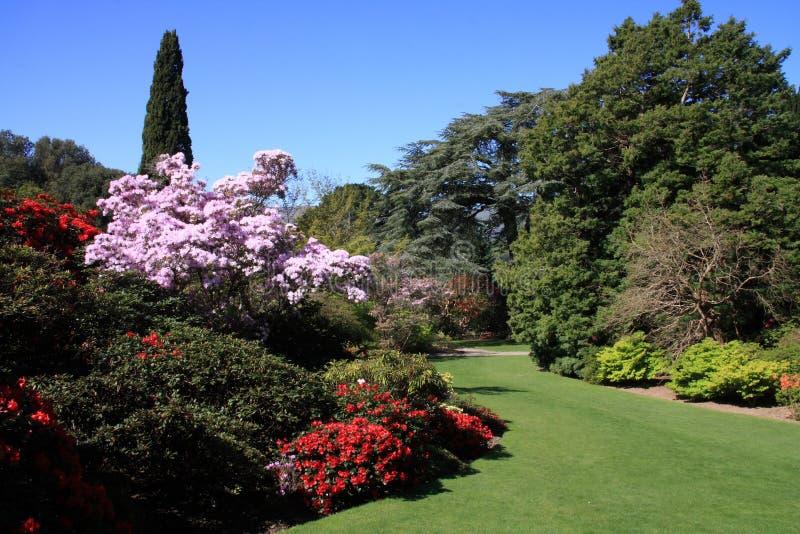 Jardins de Bodnant imagem de stock royalty free