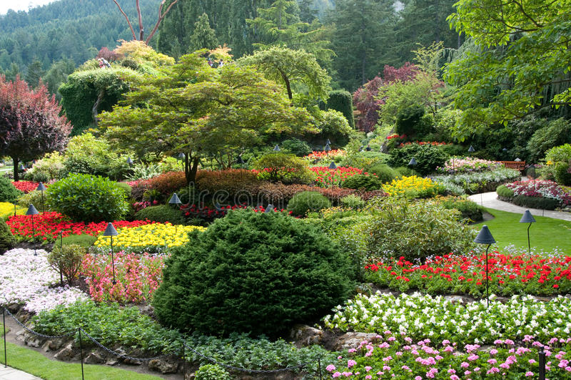 Jardins de Butchart - vue de jardin submergé photographie stock libre de droits