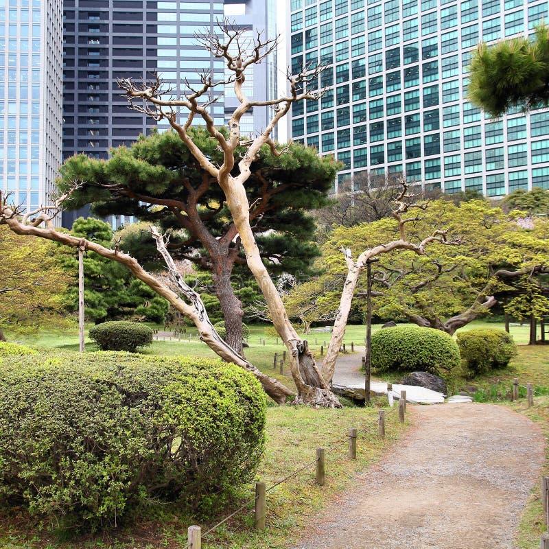 Jardins de Hamarikyu photographie stock