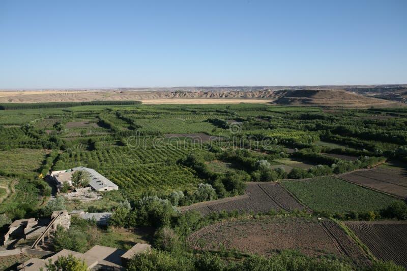 Jardins de Havsel dans Mésopotamie photographie stock