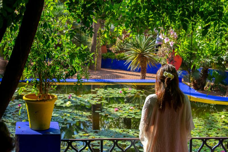 Jardins de Jardin Majorelle em Marrakech, Marrocos Plantas tropicais e cactos fotografia de stock