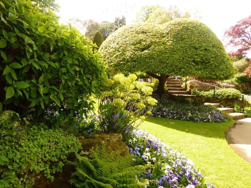 Jardins de Kent de l'Angleterre photo libre de droits